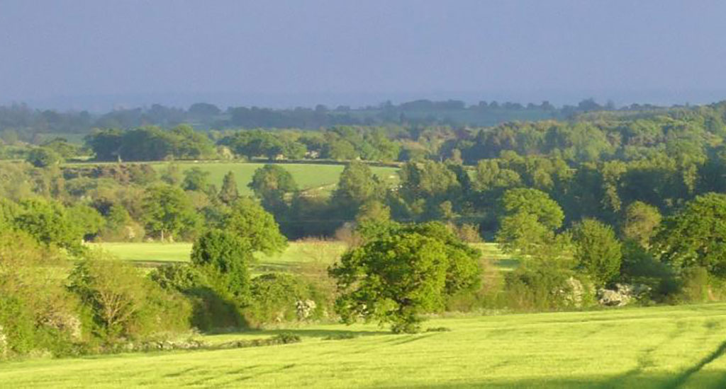 Holly Meadow Farm View